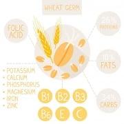 Hvede indhold protein